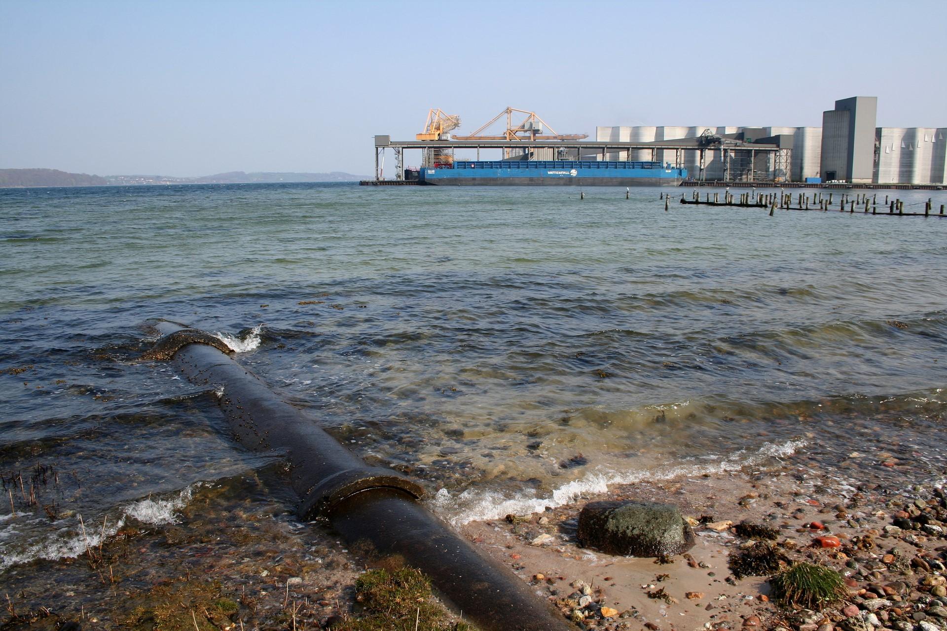 Apenrader Bucht Fishmaps Angelfuhrer Danemark