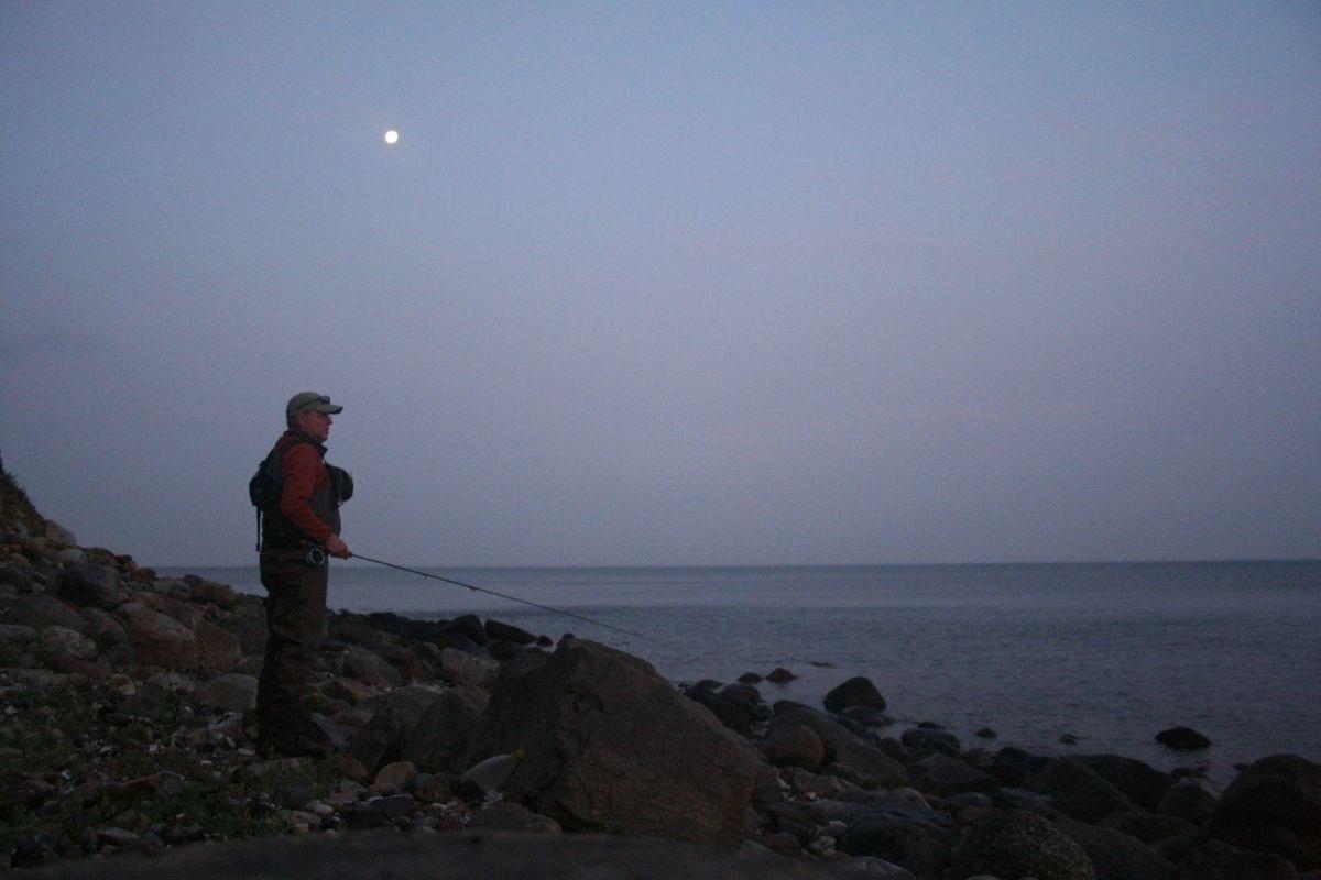 Vollmond über Fyns Hoved - und vor den Füßen jagen die Meerforellen!