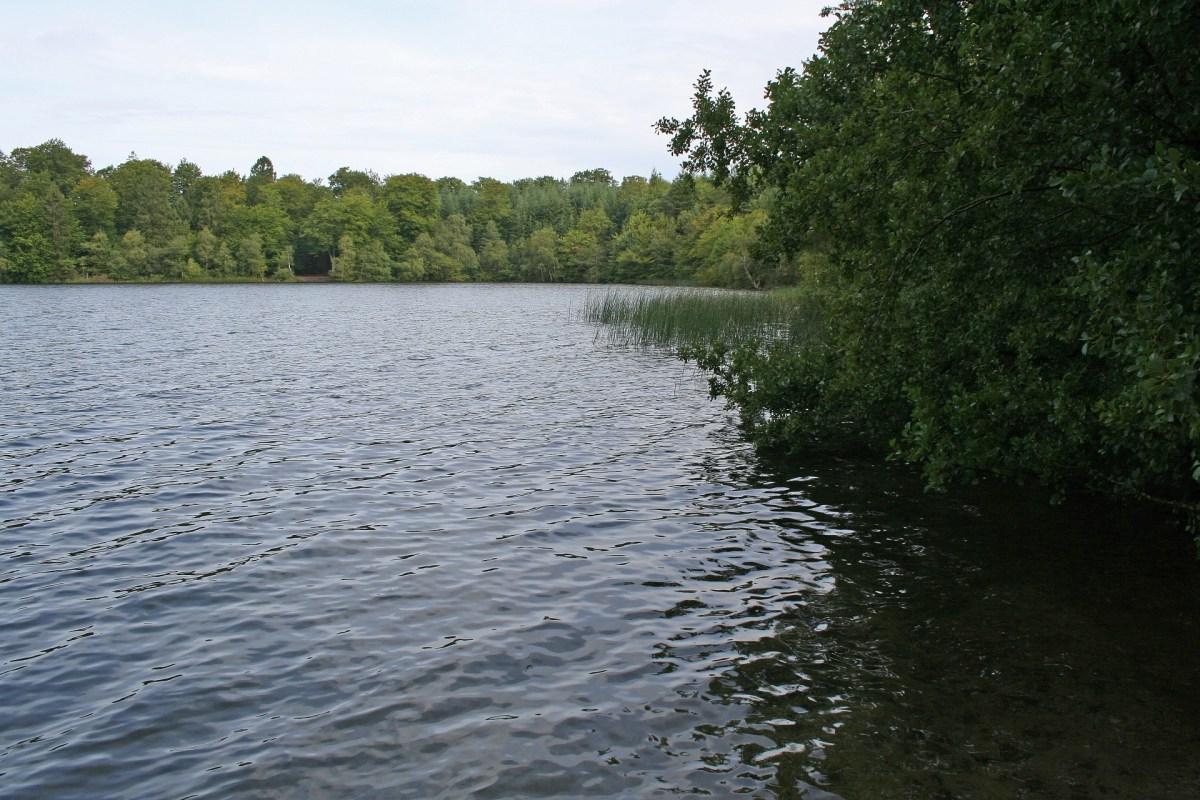Der Slåen Sø bei Silkeborg