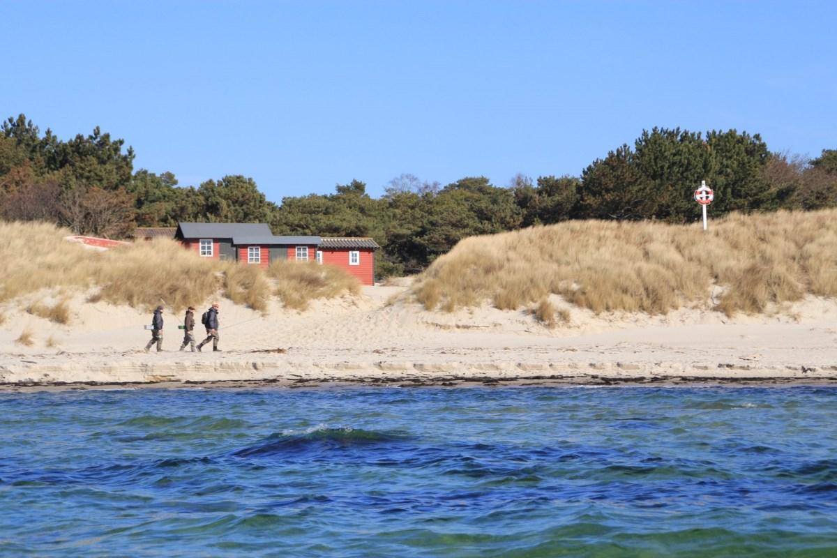 Meerforellenangeln auf Bornholm an der Südküste