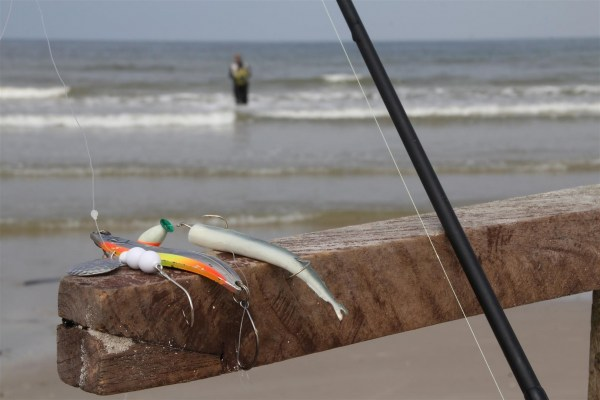 Steinbutt-Köder für die Nordsee