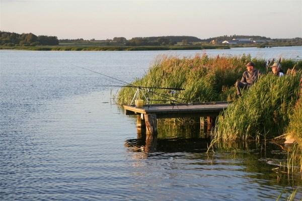 Aalangeln in Dänemark am Vilsted See