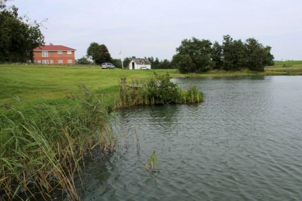 Forellensee in Dänemark Midthy Fiskepark