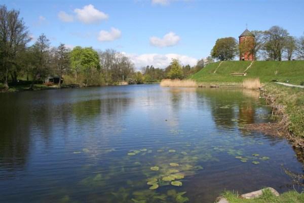 Parklandschaft mit Hechten, Barschen und Meerforellen (!)