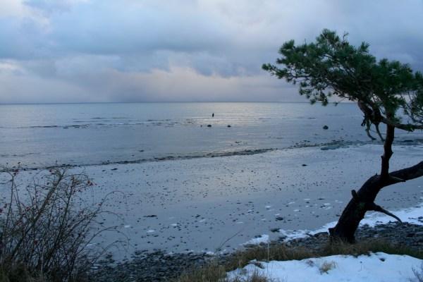 Angelplatz Broens Odde auf Bornholm