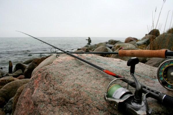 Meerforellenangeln bei Drejet auf Kegnæs
