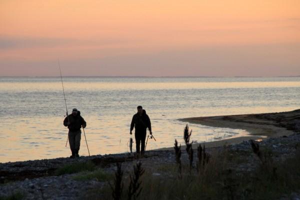 Meerforellenangeln vor Kraneled auf Møn