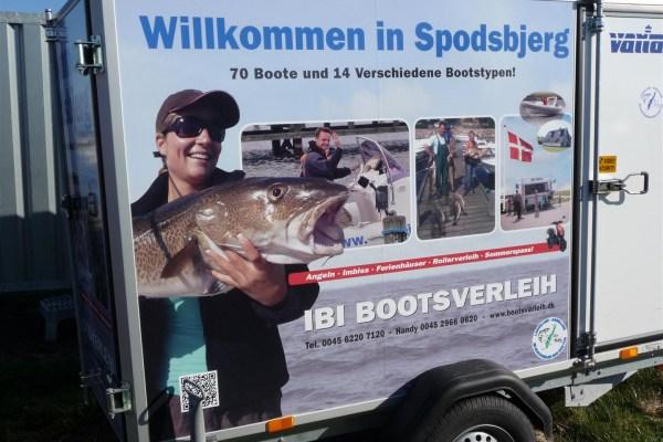 Neue Webcams im Hafen von Spodsbjerg