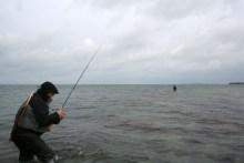 angeln auf samsö am besser rev
