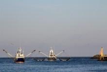 Fischkutter in Hvide Sande