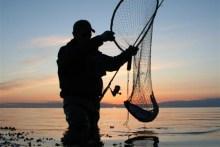 Angler mit Meerforelle im Kescher