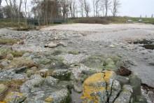 Der Einlauf der Kobbe Å auf Bornholm
