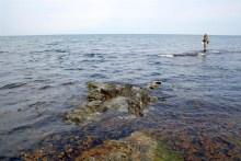 Meerforellenangler auf Bornholm