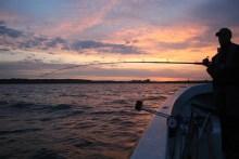 Sonnenuntergang über dem kleinen Belt