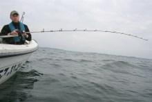 Bootsangeln auf dem kleinen Belt
