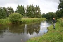 Die Skjern Au: berühmter dänischer Lachsfluss