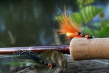 Propeller-Lachsfliege