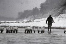 Meerforellenangeln im Winter auf Møn