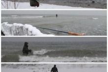 Meerforellenangeln auf Møn bei Eis und Schnee