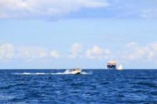 viel schiffsverkehr beim angeln vor spodsbjerg