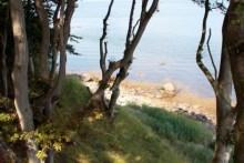 Traumhafte Küste auf Æbelø