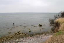 meerforellen angeln auf mön am Ålebæk Strand