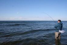 Meerforellendrill auf Bornholm