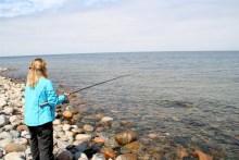 Plattfisch angeln auf Sjaellands Odde