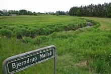 Die Bjerndrup Mølleå in Südjütland