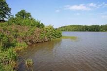 Der Holstebro Vandkraftsø