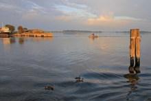 Angeln im Stege Nor auf Møn
