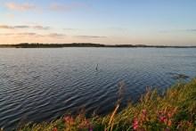 Angeln am Vilsted Sø in Nord-Dänemark