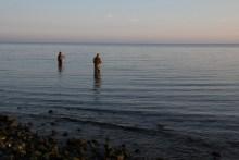 Meerforellenangeln vor Stevns Klint bei Bøgeskov