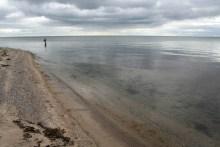 Meerforellenangeln bei Halk Strand