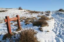 Weg zum Angelplatz Lushage auf Helgenæs