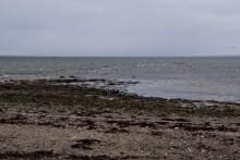 Angelplatz Tranerodde auf der Insel Als