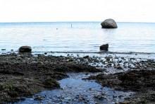 Angelplatz Lommestenen am Isefjord auf Seeland