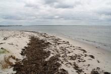 Angelplatz Skansehage auf Seeland