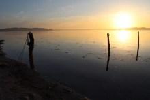 Meerforellenangeln bei Stenderup Hage am Kleinen Belt