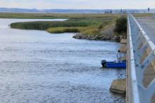 Barschangeln an der Nyord Brücke auf Møn