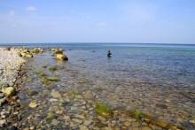 Meerforellenangeln bei Pomlerende auf Møn