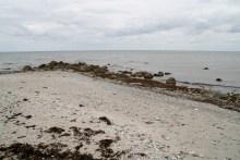 Angelplatz Vesterlyng auf Seeland