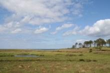 Ordrup Næs auf Seeland