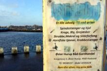 Hinweisschild für Angler an der Mole in Øster Hurup