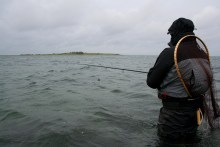 Meerforellenangeln auf Samsø bei Havnehagen am Besser Rev