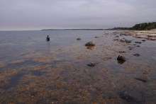 Angelplatz Ebbeløkke Strand auf Seeland