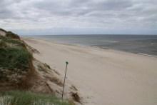 Angeln an der Nordsee in Dänemark bei Hegnet