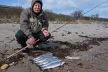 Meerforellen angeln auf Langeland bei Lejbølle