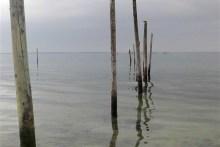 Pfähle im Wasser bei Knudshoved Odde